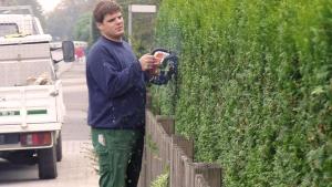 Gartengestaltung - Pflegearbeiten