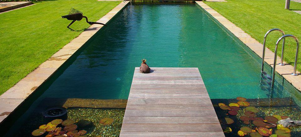 Naturpools & Schwimmteiche